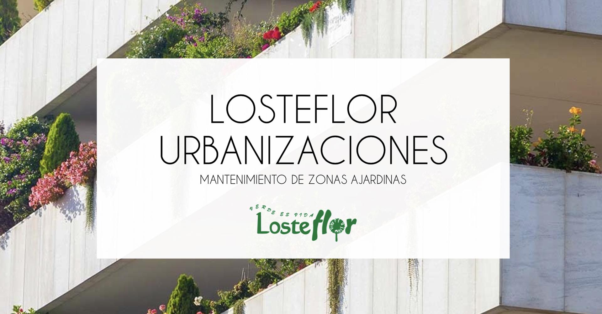 Losteflor | Dossier